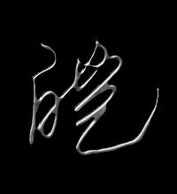 皑艺术字体