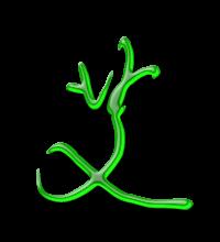 艺术字体艾